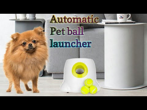 Dog Cat Auto Pet Toys Tennis Ball Launcher Automatic Throwing Machine Pet Ball Throw Device Section