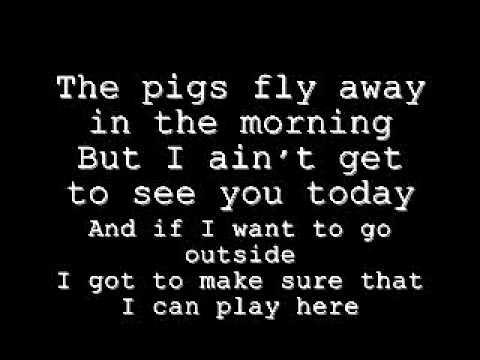 Tyler the Creator- Pigs Fly lyrics