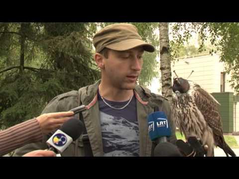 EBU Hawks airport