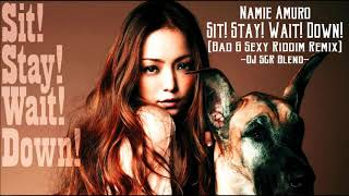 安室奈美恵 - Sit! Stay! Wait! Down!