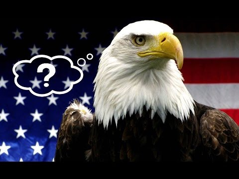 25 Unbelievable Things SOME Americans Believe