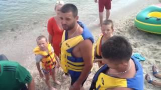 видео Акулы в черном море
