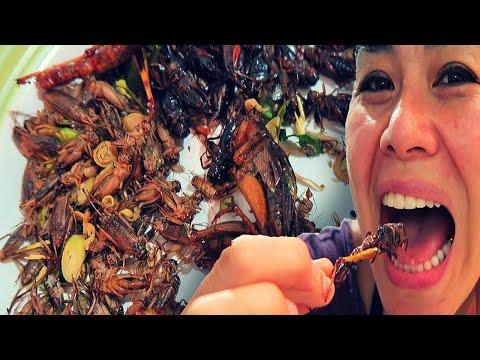 Thailand Street Food Tamil thumbnail