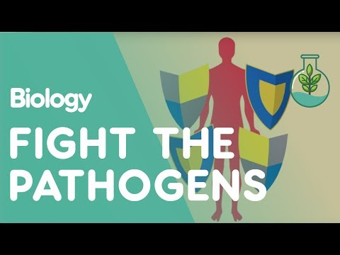 Human Defence Systems Against Pathogens | Biology for All | FuseSchool