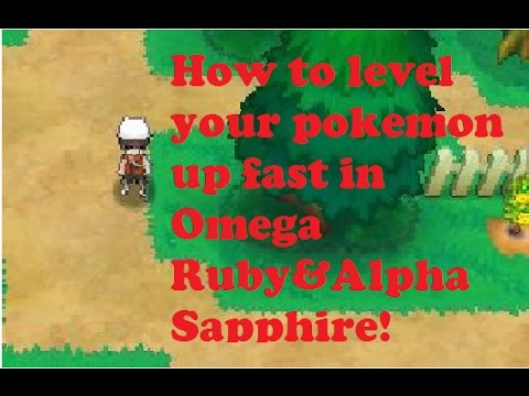 How to level up your Pokemon FAST in oras