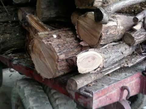 Legna da ardere lunga in tronchi da lavorare vendita for Legna da ardere prezzi