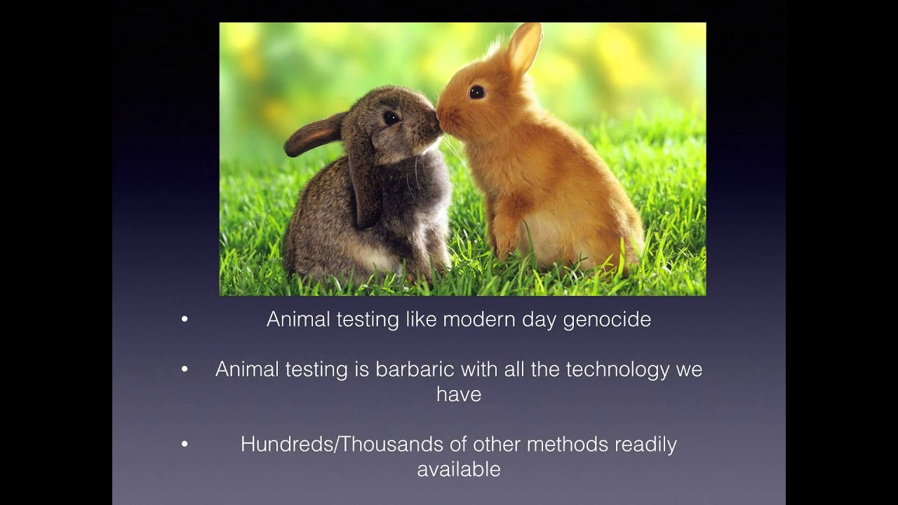 animal testing business powerpoint animal testing business powerpoint