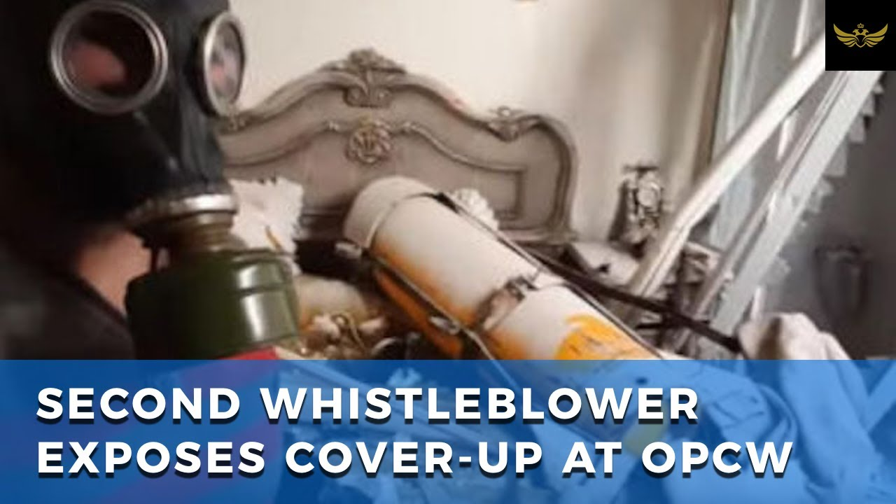Second whistleblower exposes cover-up at OPCW & Syria chemical weapons report