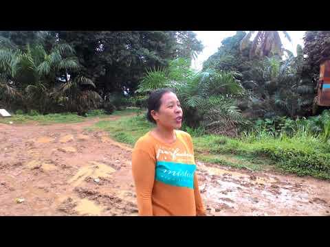 Masyarakat Desa tebing tinggi kecamatan marosebo ulu kabupaten Batanghari marah jalan mereka hancur