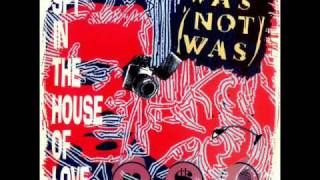 WAS NOT WAS-SPY IN THE HOUSE OF LOVE