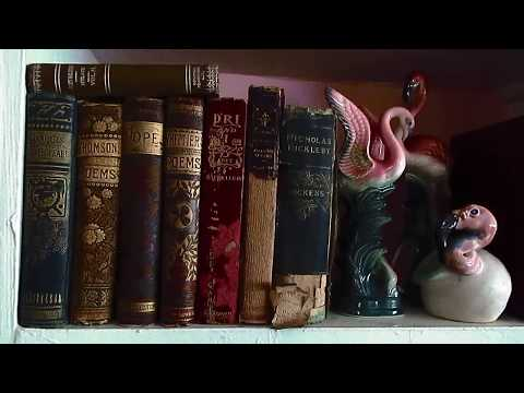 Vintage and Antique Book Collection