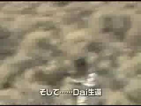 Tsukuba Circuit 350z Crash Doovi