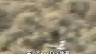 jun stream 350Z crashed at 350km/h (Dai San) (Silver State Classics) thumbnail