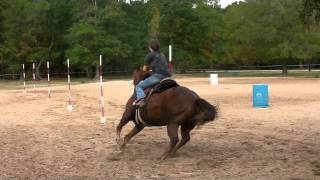Cimmaron poles practice