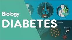 hqdefault - Diabetes Worksheets Gcse