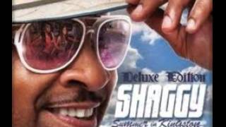 Shaggy  [Summer In Kingston (july 2011)]-End of The World