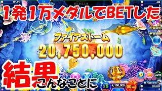 【ゴールデンホイヤー攻略】コインの増やし方!オーシャンキング2!【ノニコム】
