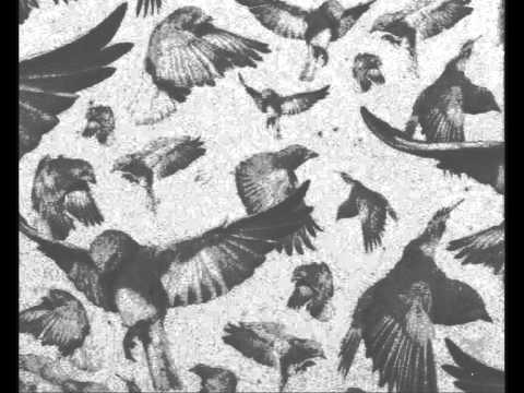 John Cage: Bird Cage (1972)