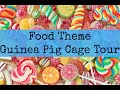 FOOD Themed Guinea Pig CAGE TOUR