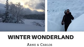 A tour of ARNE & CARLOS' winter wonderland