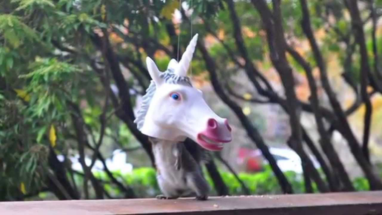 Unicorn Squirrel Feeder Archie Mcphee Co