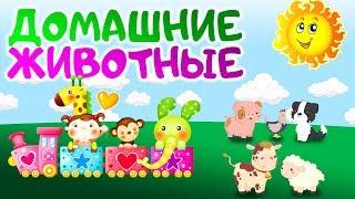 Домашние животные 🐶🐺🐷, обучающий ролик🙌 для детей, малышей 😇