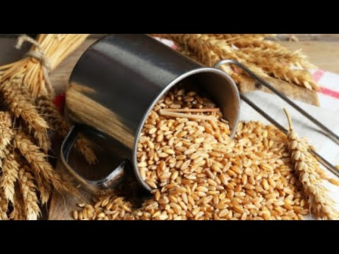 durum-wheat-and-its-benefits