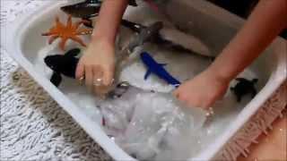 sharks kid toy aquarium