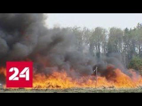Усиленный режим противопожарной безопасности введен в столичном регионе — Россия 24