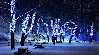 Мелодия души.Зимние вечера! Winter evenings!