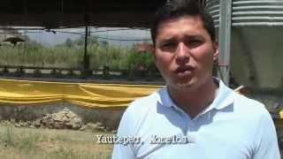 Pollo orgánico, saludable y ecológico Aires de Campo