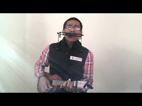 Betapa hatiku berterimakasih (ukulele n harmonica)