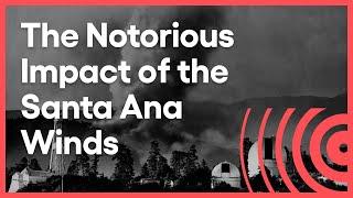 The Devil Wind | Lost LA | Season 1 | Episode 1
