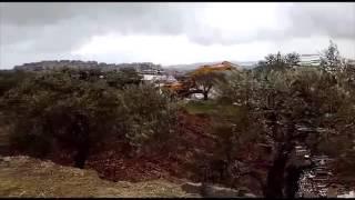 بالفيديو| الاحتلال الإسرائيلي يهدم منزلين وملعبا ويجرف أرضا في بيت لحم
