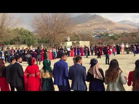 İMAD MEMED-Derik / Aşiret Düğünü / AĞIR DELİLO 2018