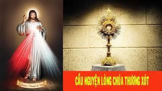 🔴 Cầu nguyện Lòng Chúa Thương Xót mỗi  3h chiều