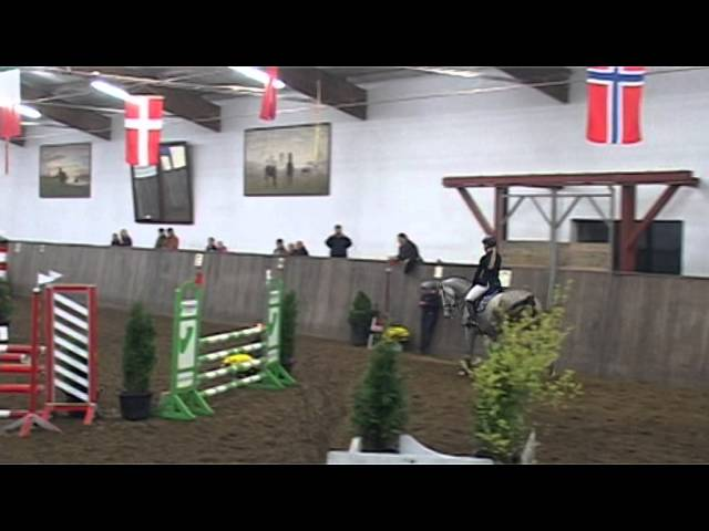 Holstein jumper by Cassini I for sale