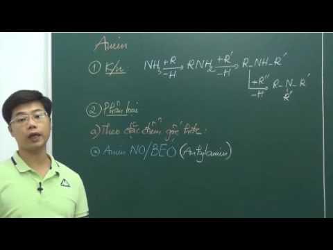 Li thuyet Amin- Aminoaxit (Phan 1)