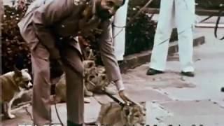 Ethiopia   Africa-s Ancient Kingdom 1961