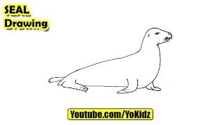 How to draw a Seal for kids