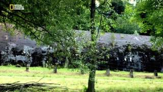 Nazi Bauwerke Utopie und Groessenwahn - Die Wolfsschanze
