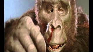 King Kong 2 : King Kong et son fils (en français) thumbnail
