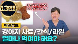 강아지 사료량, 간식량의 황금 비율은? (간식 먹이기전…