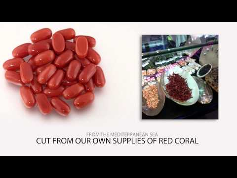 Which are the tests to identify real red coral from fake coral-Click Link in Description