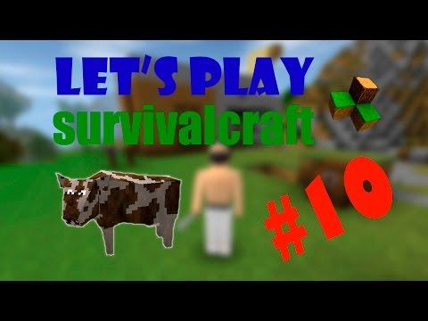 [ШОК! Корова скачала читы!] Let's play по survivalcraft #10