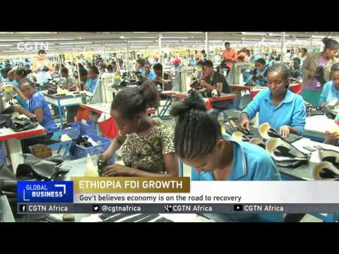 Ethiopia: Over half a billion of foreign investment entered in last three months