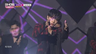 Show Champion EP.239 Longguo&Shihyun - INTRO+the.the.the [용국&시현 - 인트로+the.the.the ]