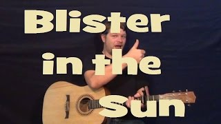 Blister in the Sun (Violent Femmes) Easy Strum Guitar Chords Lick How to Play Lesson