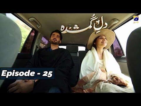 Download Dil-e-Gumshuda - EP 25 - 1st Nov 2019 - HAR PAL GEO DRAMAS Mp4 baru