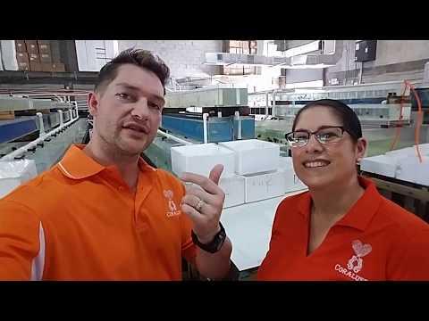 Coralust Visits TFT Distributor